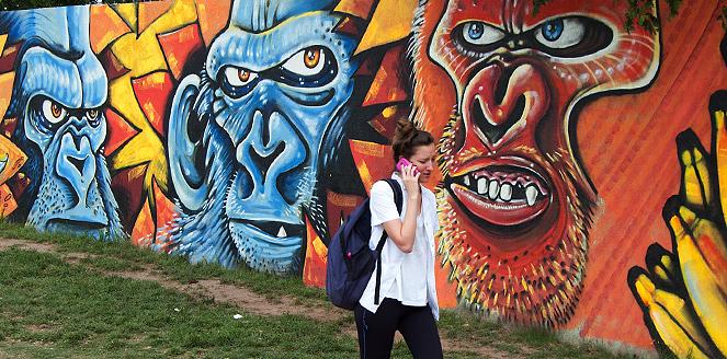 chica unc mural gorilas